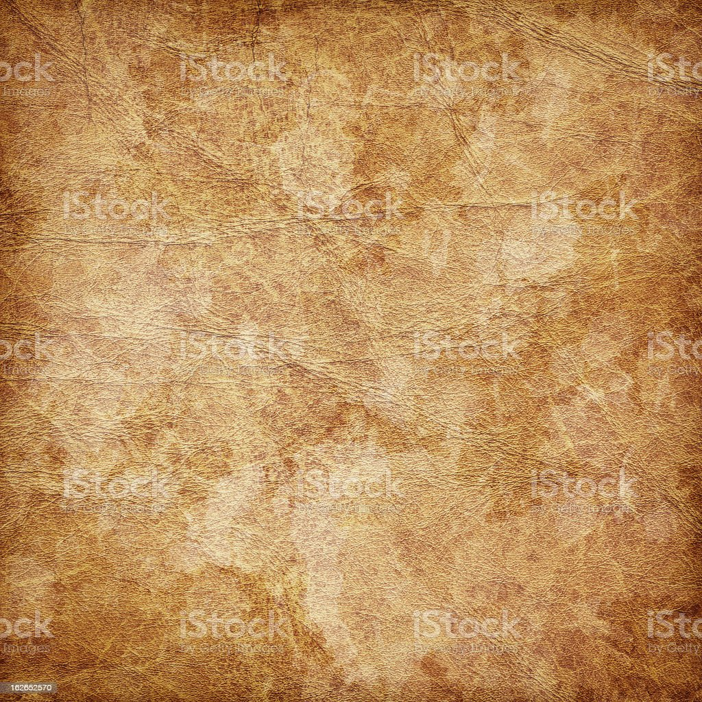 Hi-Res Antique Animal Skin Parchment Wizened Mottled Vignette Grunge Texture royalty-free stock photo