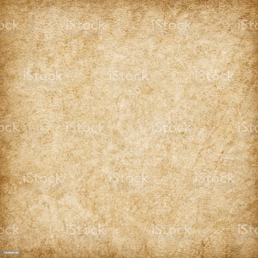 Hi-Res Antique Animal Skin Parchment Wizened Mottled Vignette Grunge Texture stock photo