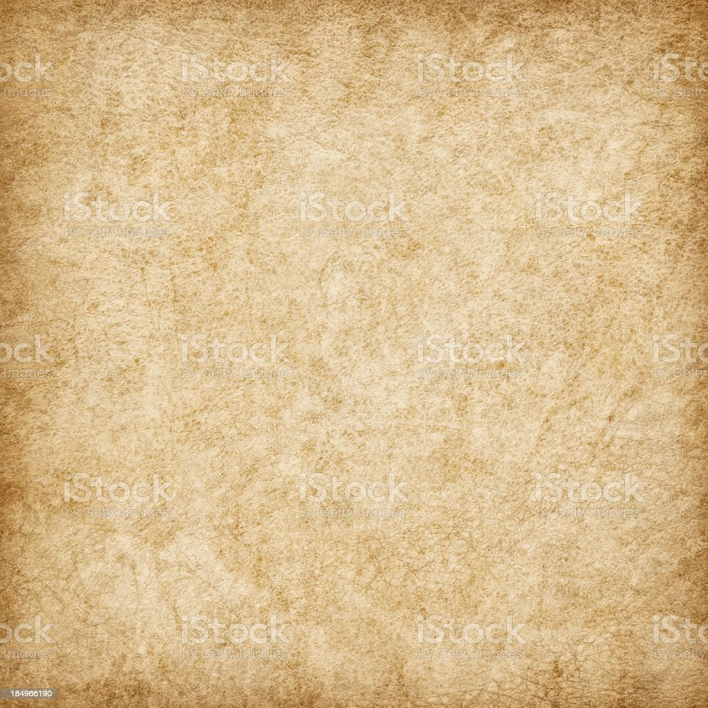 Hi-Res Antique Animal Skin Parchment Wizened Mottled Vignette Grunge Texture stock photo