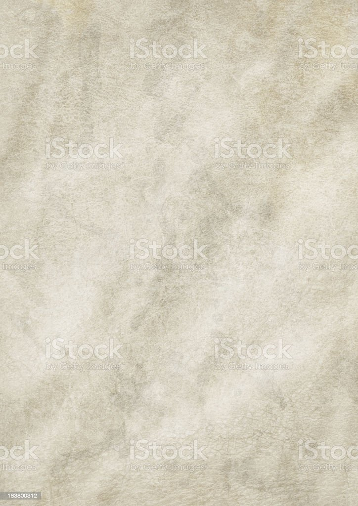 Hi-Res Antique Animal Skin Parchment Wrinkled Dappled Grunge Texture royalty-free stock photo