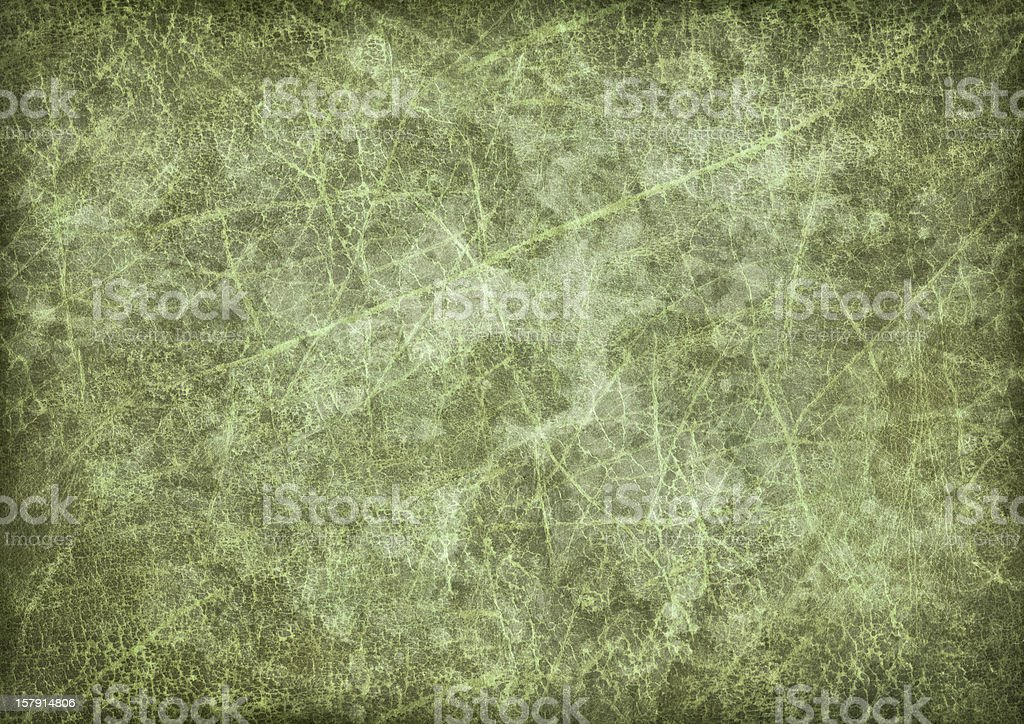Hi-Res Antique Green Animal Skin Parchment Vignette Grunge Texture royalty-free stock photo