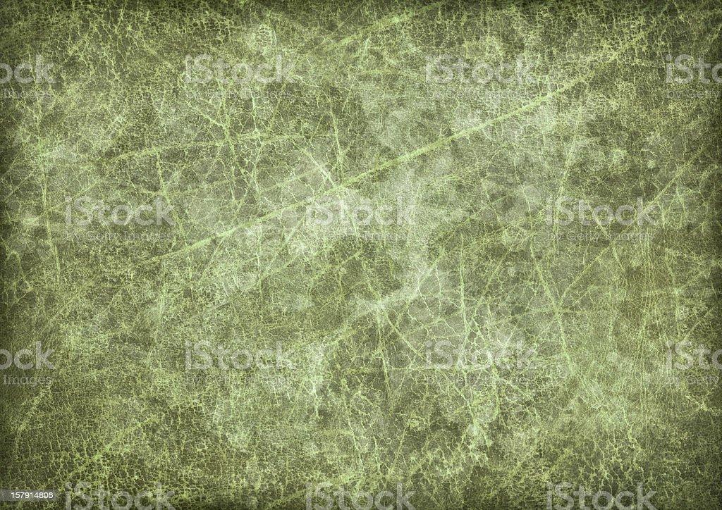 Hi-Res Antique Green Animal Skin Parchment Vignette Grunge Texture stock photo