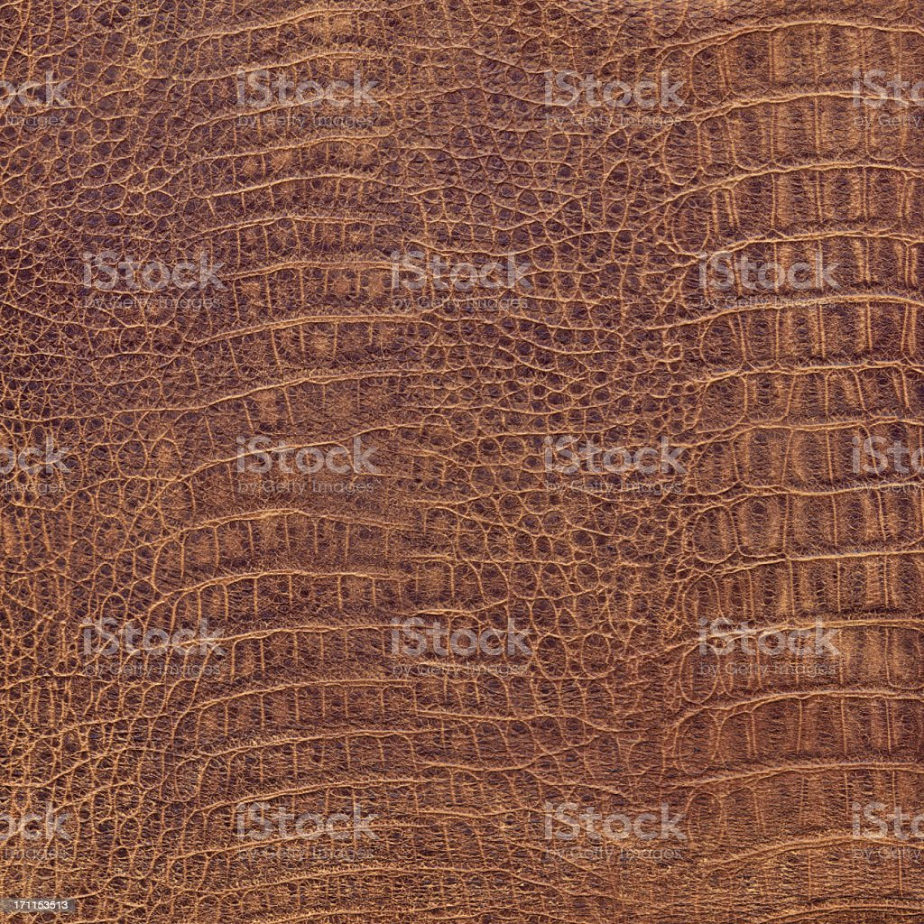 Hi-Res Crocodile Seamless Brown Leather Texture Tile royalty-free stock photo