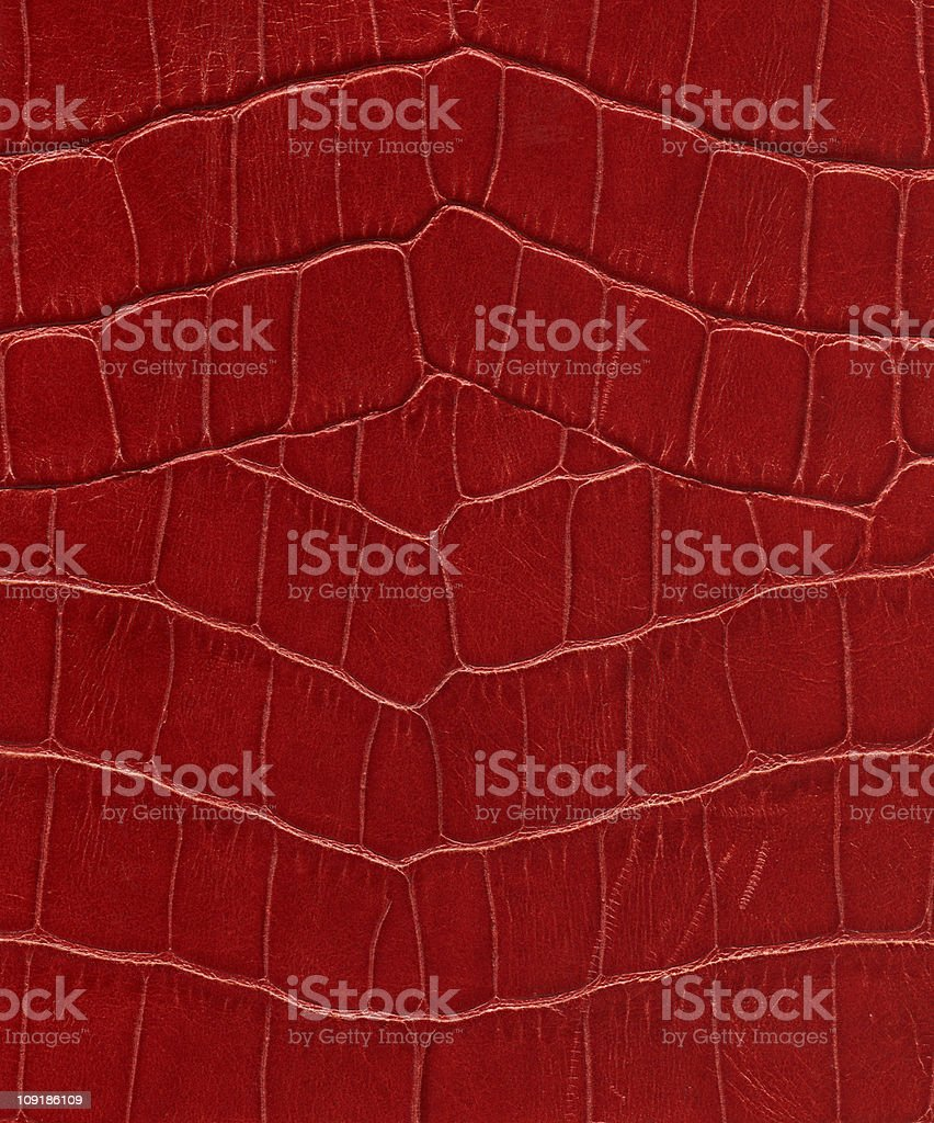 Hi-res lizard leather background stock photo