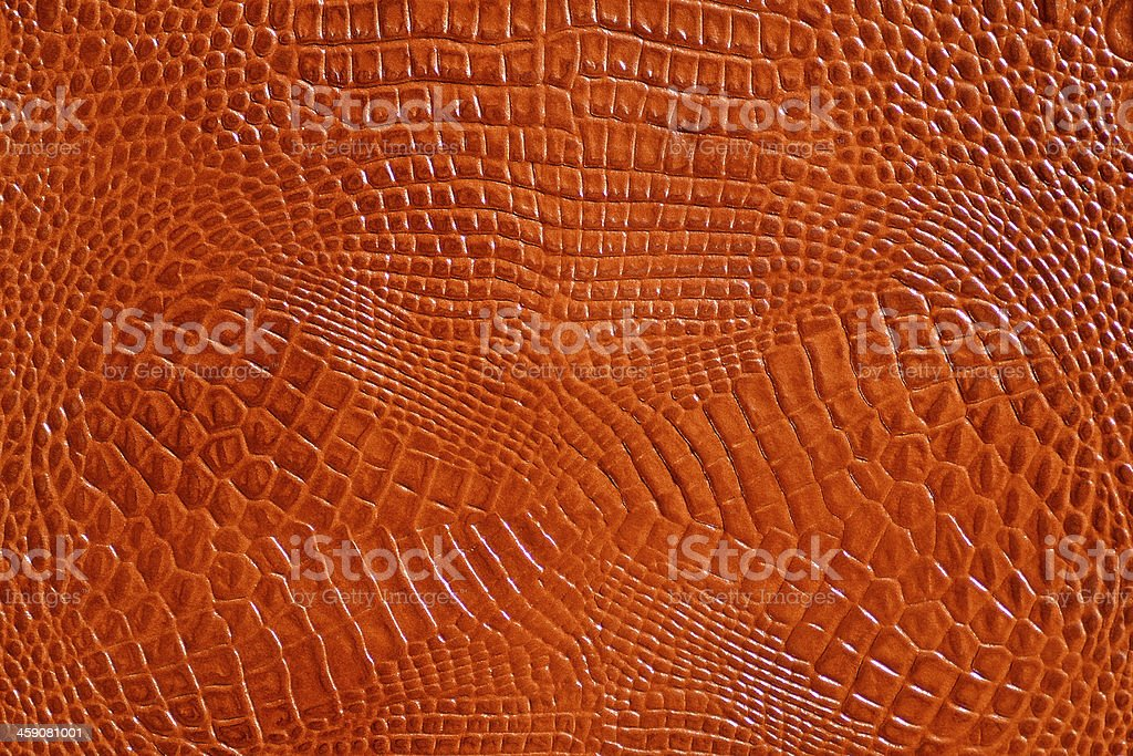 Hi-res lizard leather stock photo