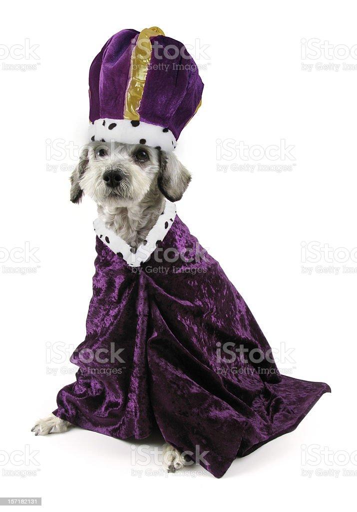 His Royal Highness stock photo