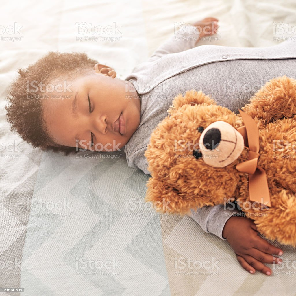 His snuggly, cuddly, nap buddy stock photo