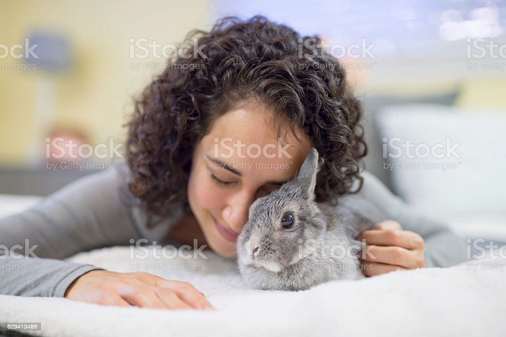 Hispanic adult female struggling with a bunny  rabbit stock photo