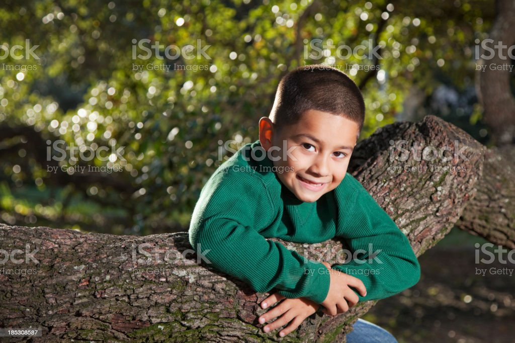 Hispanic boy playing on a tree at park stock photo