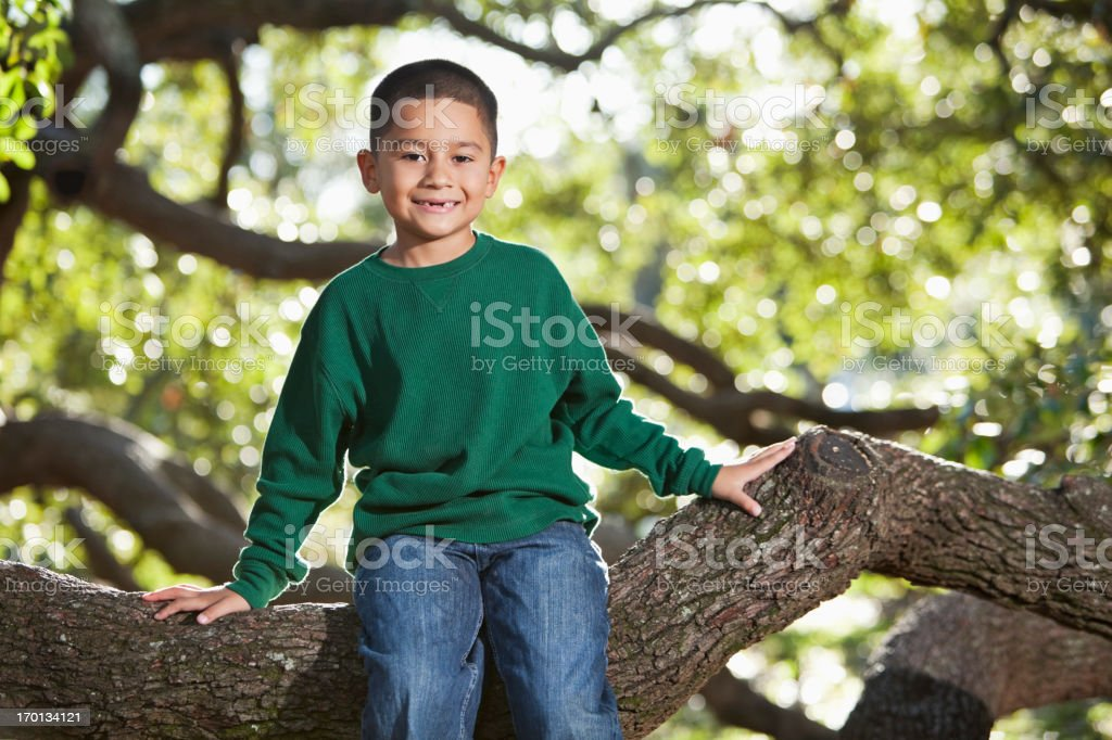 Hispanic boy sitting in tree stock photo