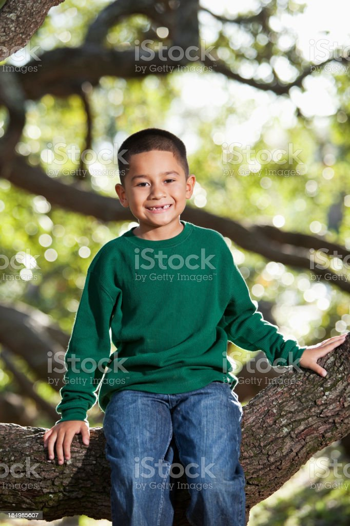Hispanic boy sitting in tree royalty-free stock photo