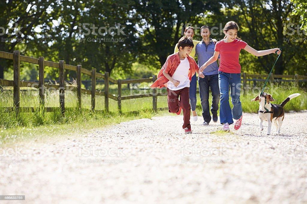 Hispanic Family Taking Dog For Walk In Countryside stock photo