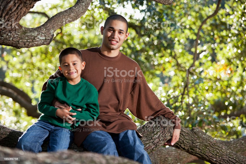 Hispanic father and son sitting in tree at park stock photo