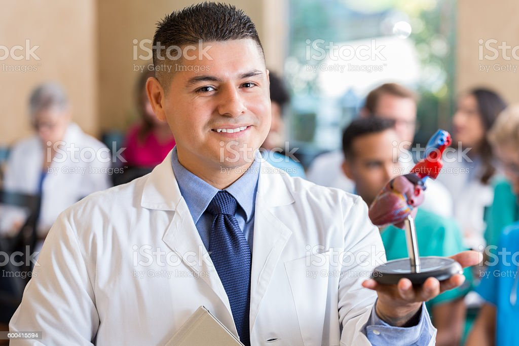 Hispanic male doctor holding a model of the human heart stock photo