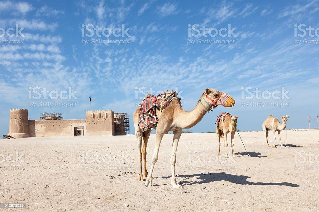 Historic Al Zubara fort in Qatar stock photo