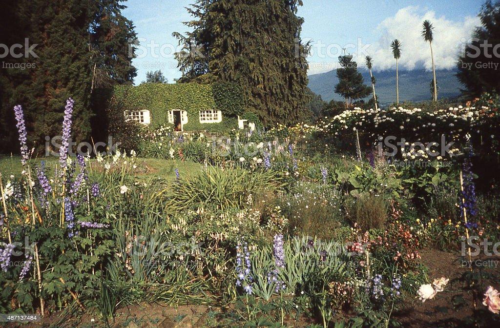 Historic Belgian Plantation House Mugongo Northwest Province Rwanda Central Africa stock photo