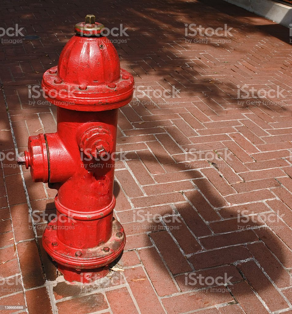 Historic District Fire Hydrant royalty-free stock photo