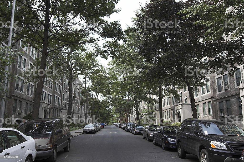 Historic Jackson Heights Street royalty-free stock photo