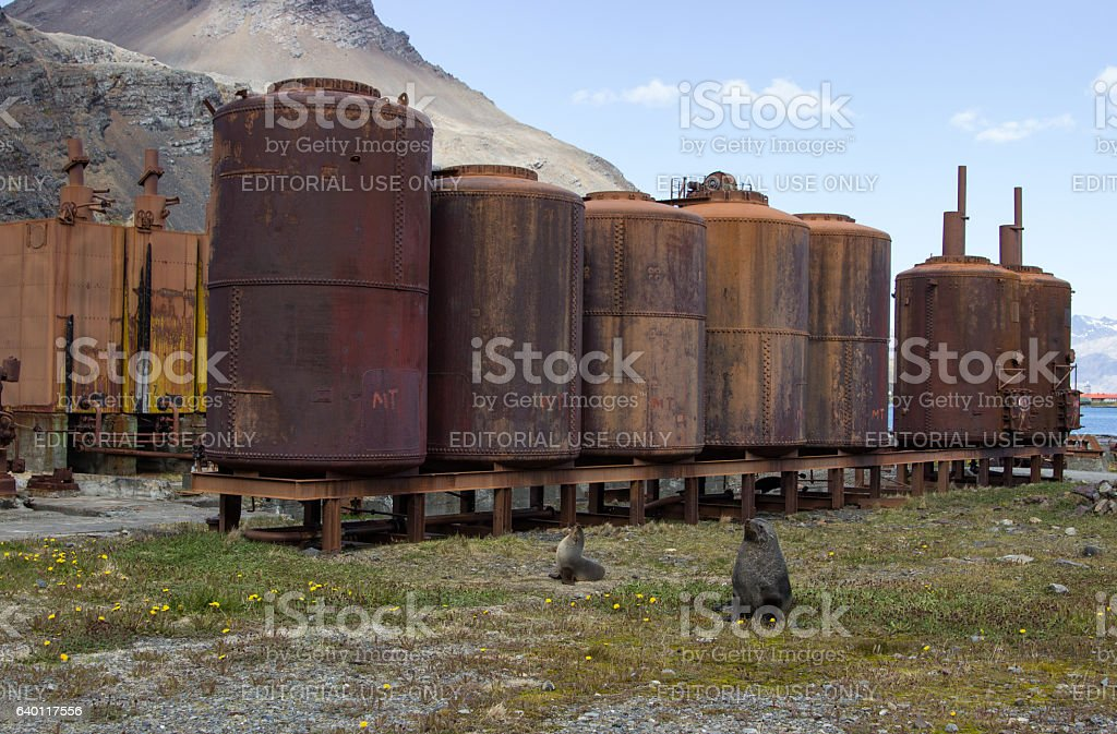Historic whaling station, South Georgia stock photo