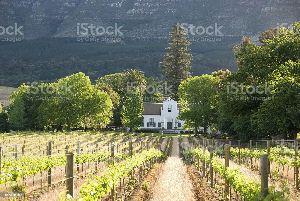 Historical Colonial Building in the Vineyards near Capetown stock photo