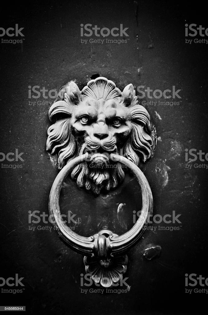 historical door knocker with lion stock photo