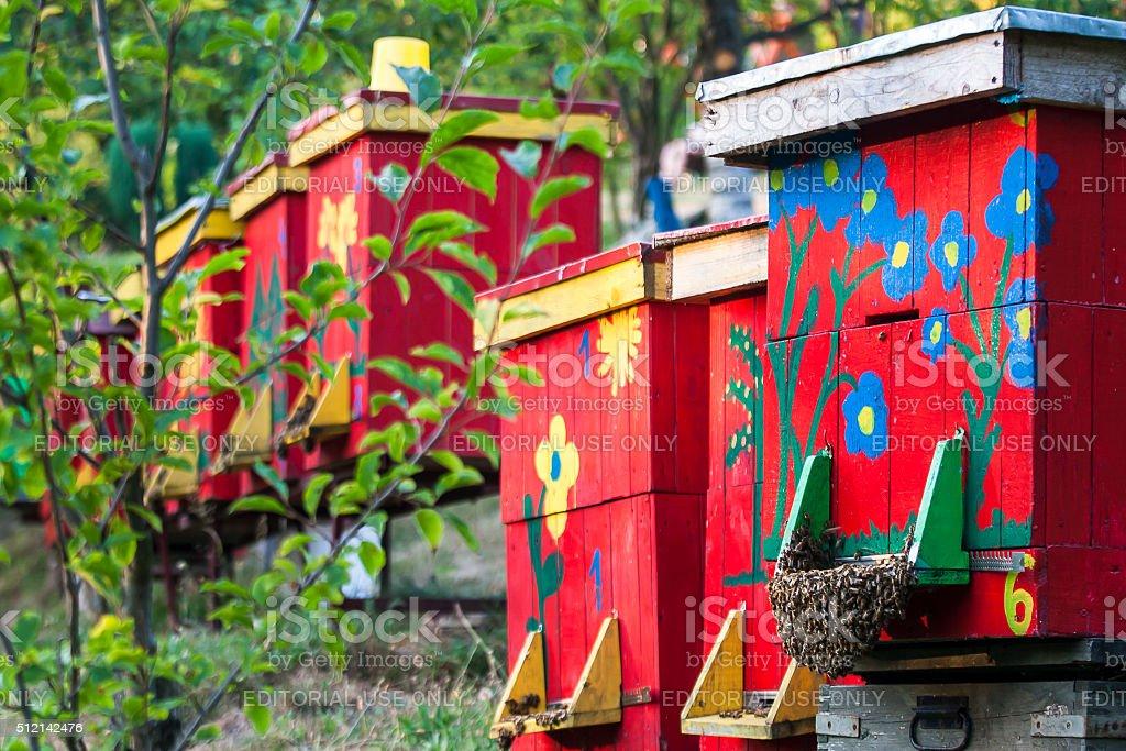 hives stock photo