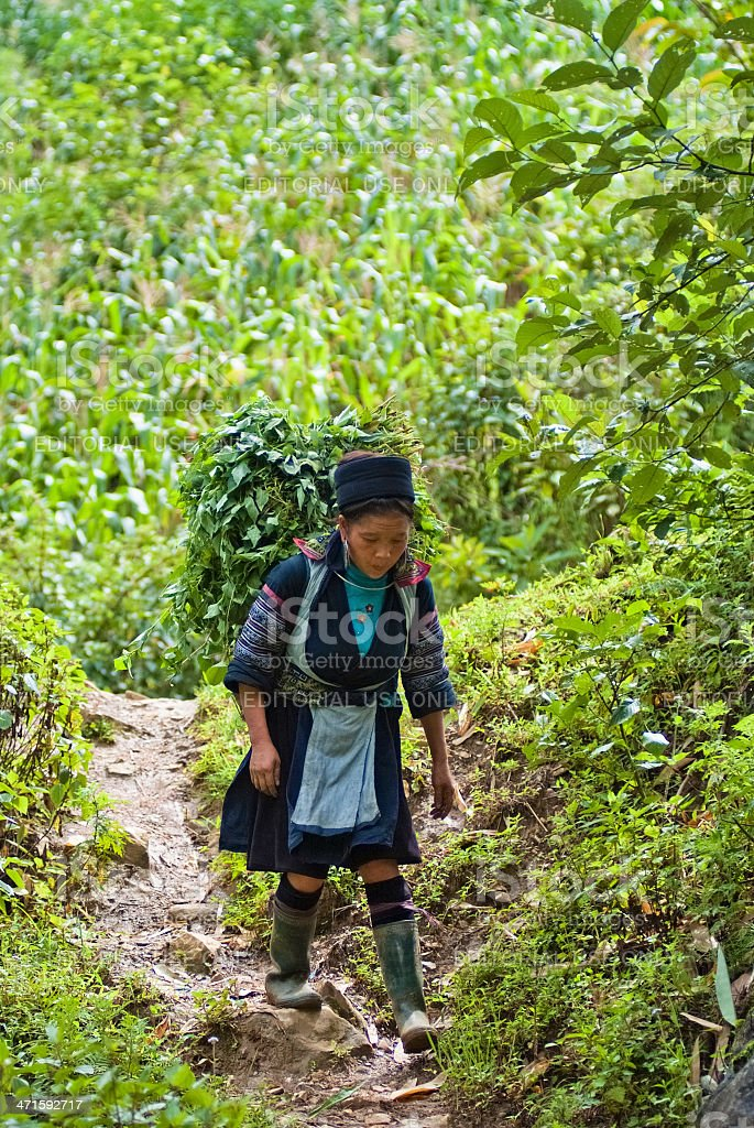 Hmong people in Vietnam royalty-free stock photo