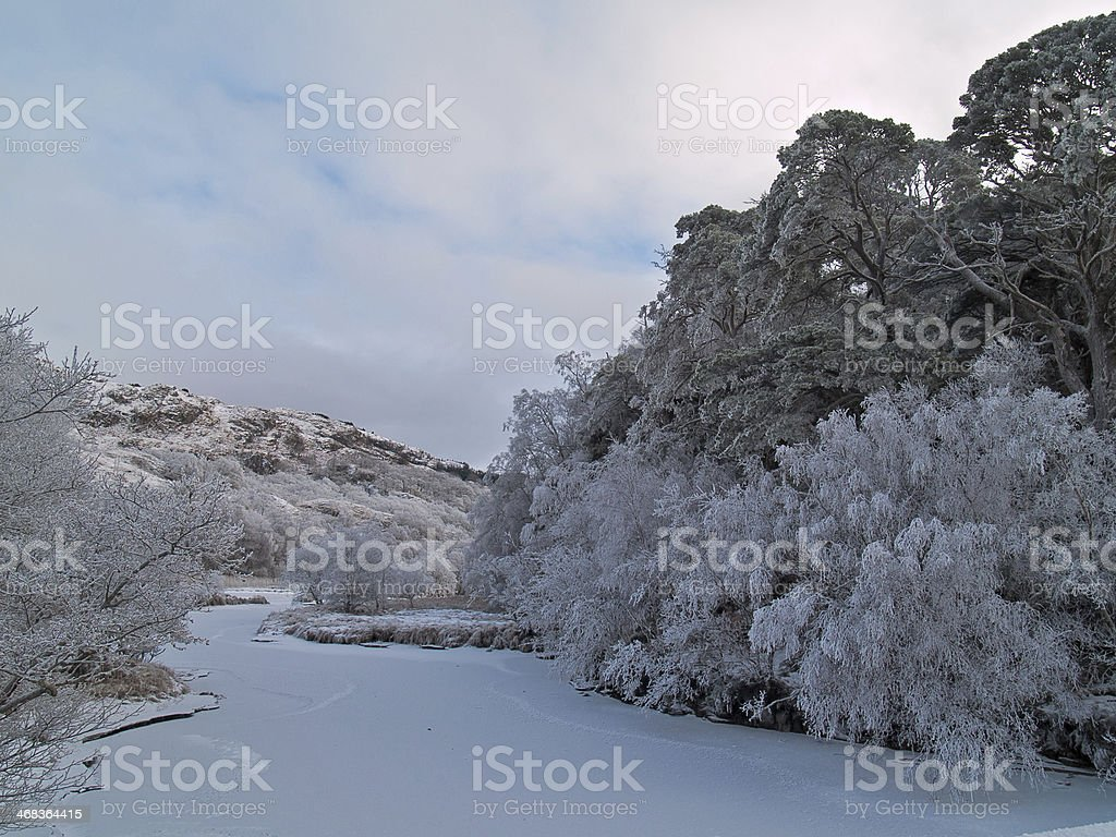Hoar frost at Loch Shiel, stock photo