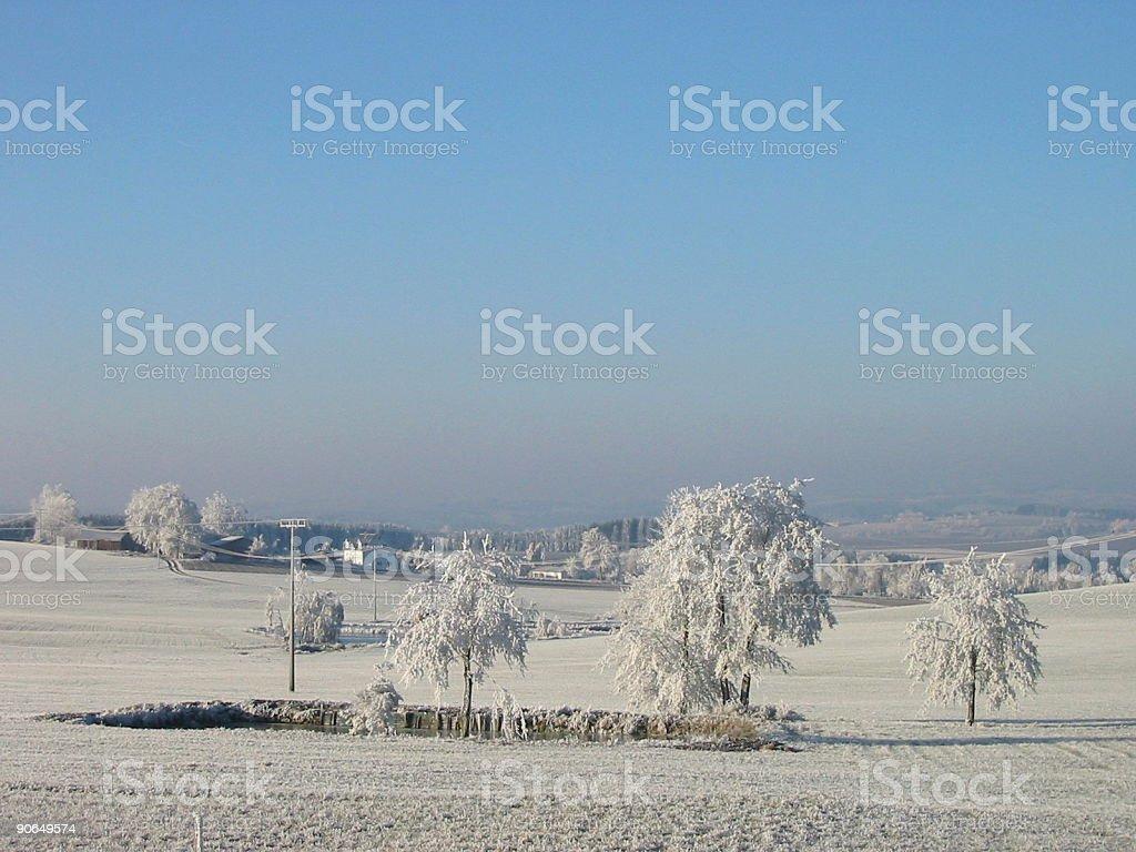 hoarfrosted landscape stock photo