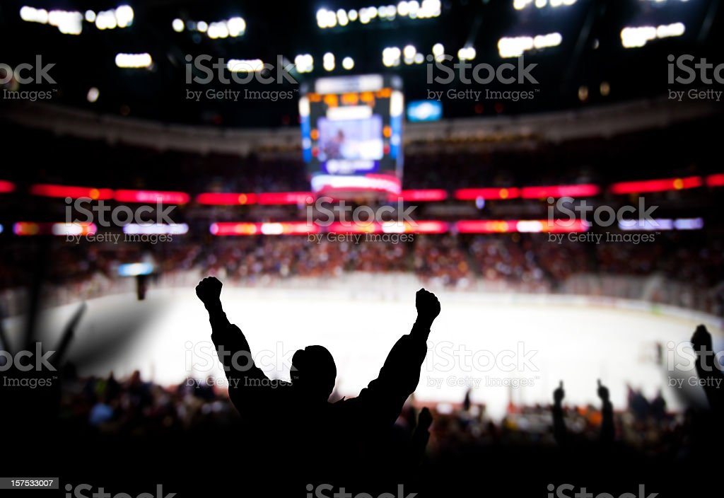 Hockey Excitement royalty-free stock photo