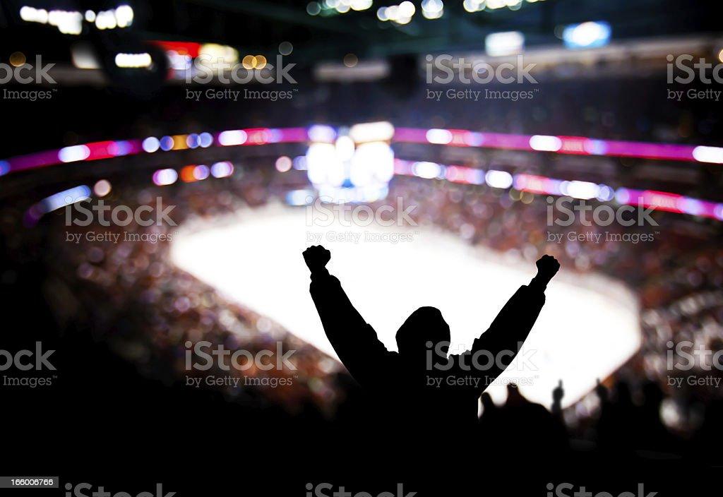 Hockey Excitement stock photo
