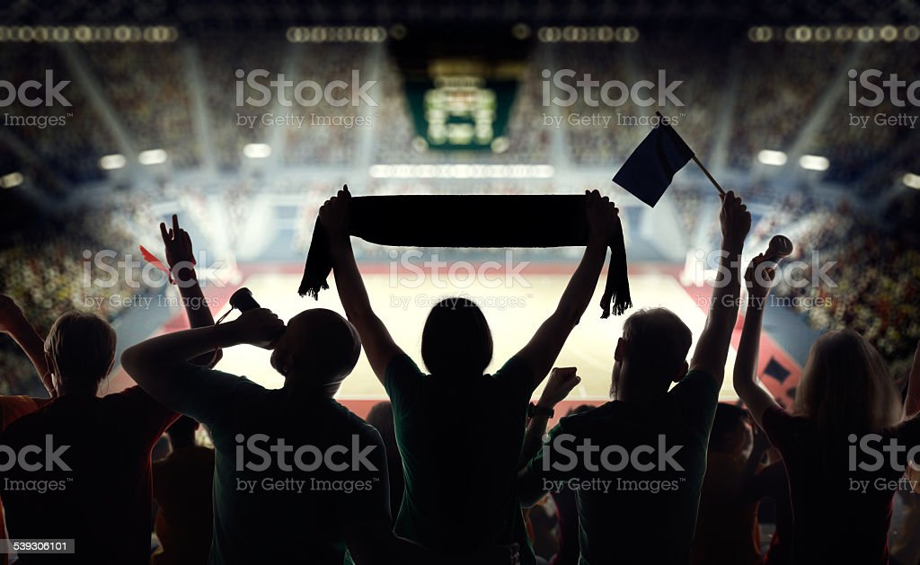 Hockey fans at stadium stock photo