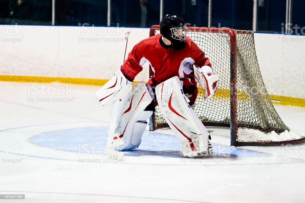Hockey Goaltender Action Shot stock photo