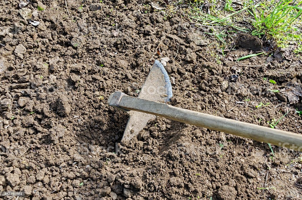 Hoe, the traditional tool for the agriculture stock photo