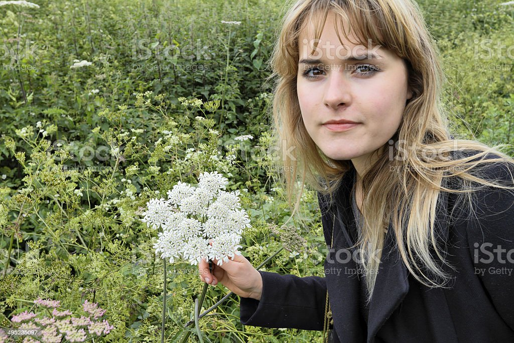 White wild flower hogweed Heracleum sphondylium with outdoor girl stock photo