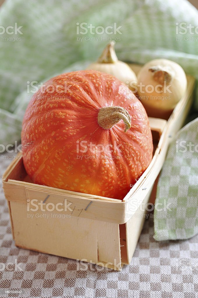 Hokkaido and Butternut Pumpkin royalty-free stock photo