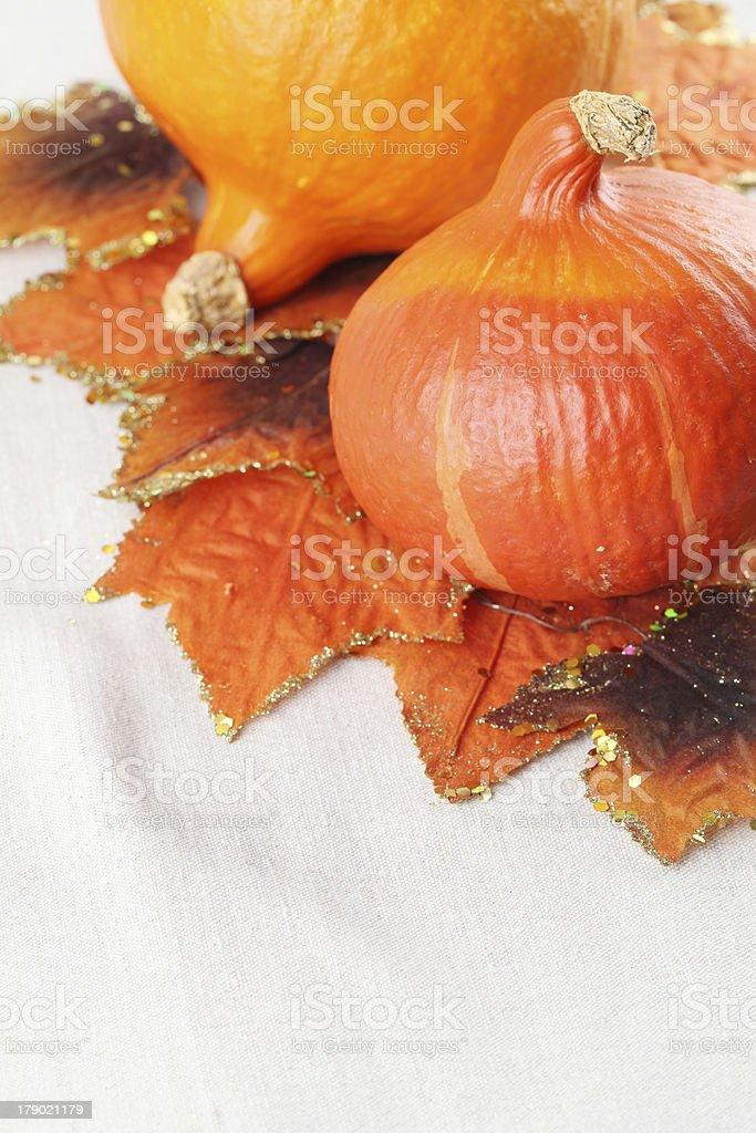 Hokkaido pumpkins with autumn leaves royalty-free stock photo