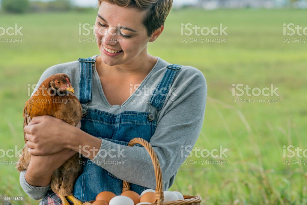 Holding a Chicken stock photo