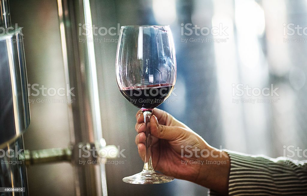Holding a glass of red wine. stock photo