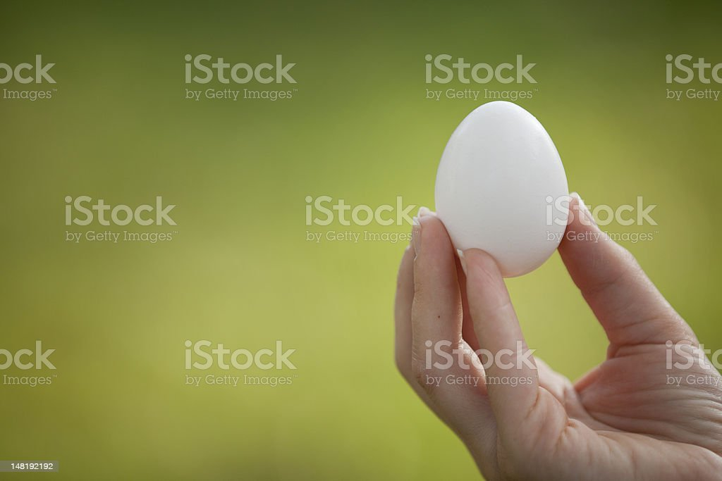 Holding an Egg royalty-free stock photo