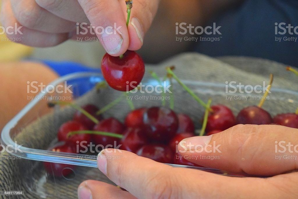 holding fresh cherries red fruit close up food stock photo
