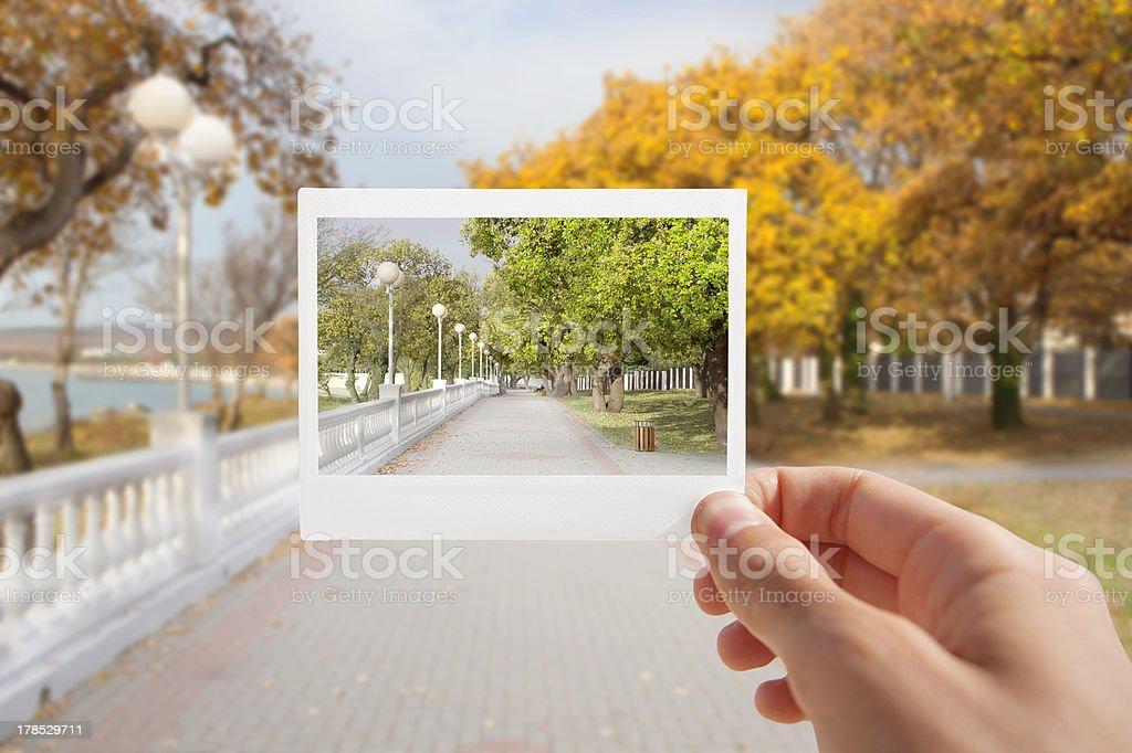 Holding Instant Photo. stock photo
