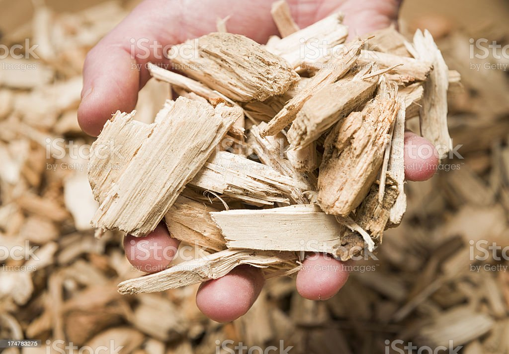 Holding Wood Chips for Biomass Boiler Macro stock photo