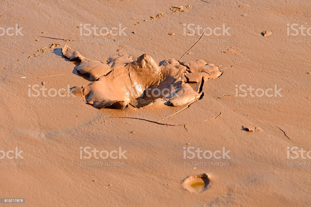 Hole in Mud stock photo