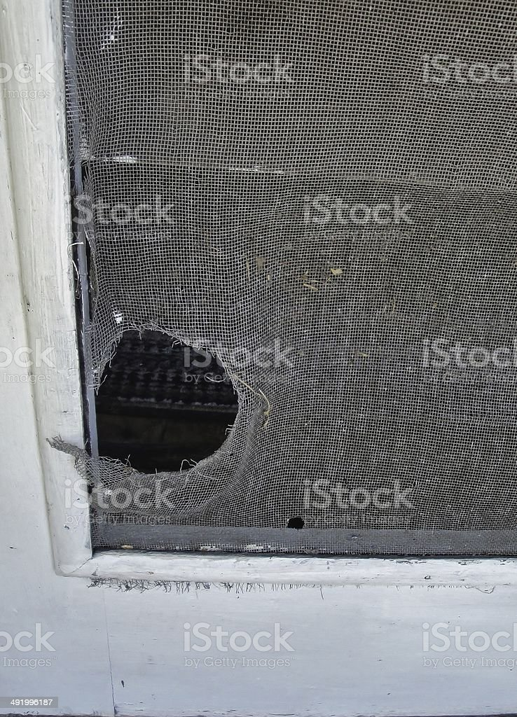 Hole in screen door stock photo