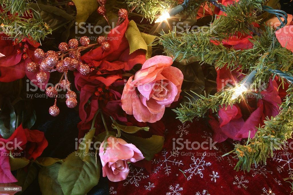 Holiday: Christmas Roses on tree with lights royalty-free stock photo