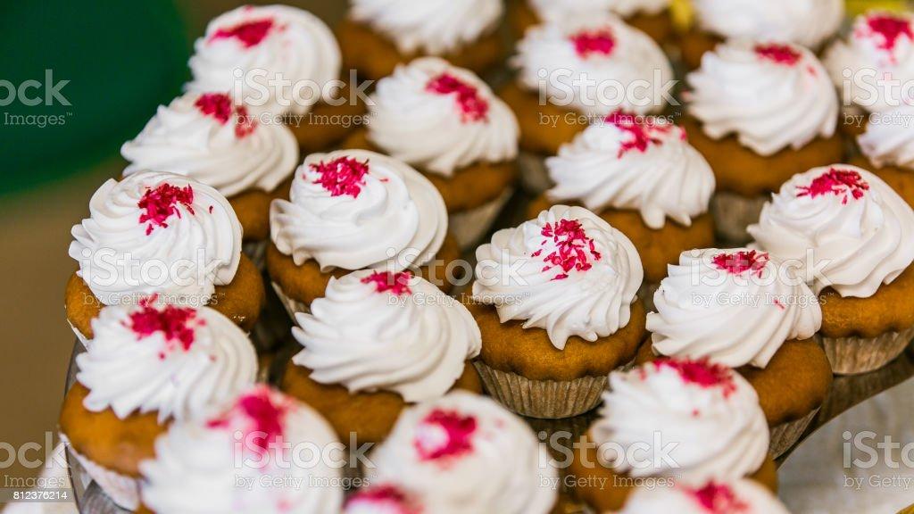 Holiday cupcakes stock photo