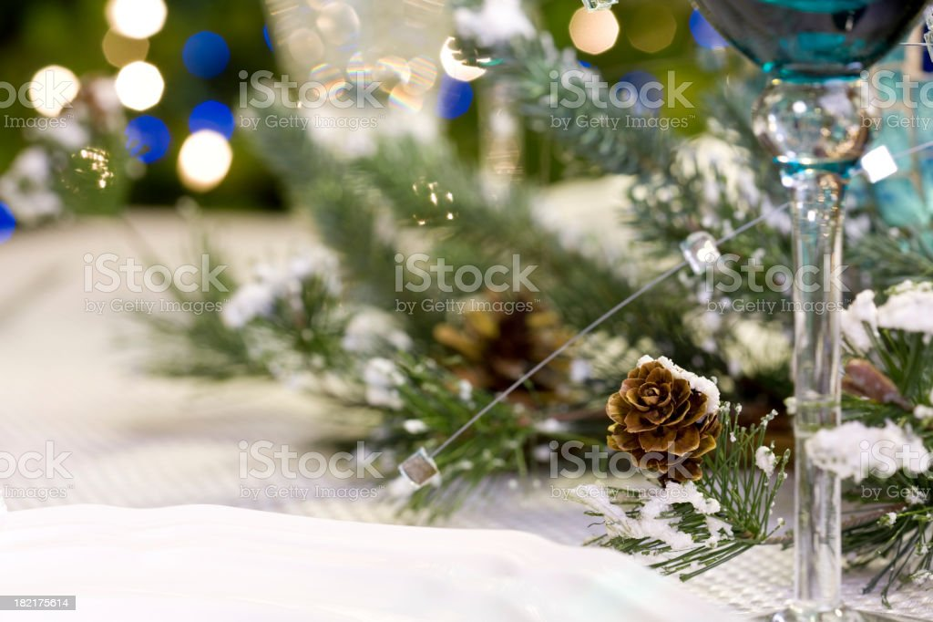 Holiday Dining royalty-free stock photo