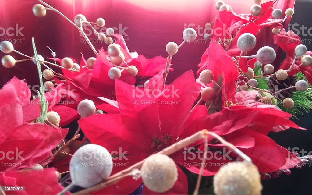 Holiday floral view one stock photo