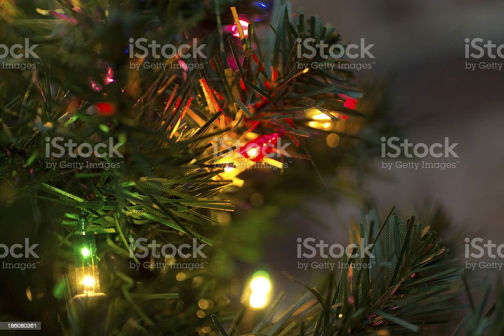 Holiday Glow stock photo
